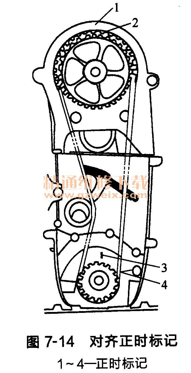 铃木雨燕发动机正时传动带的拆卸啥样蛤蜊珍珠图片