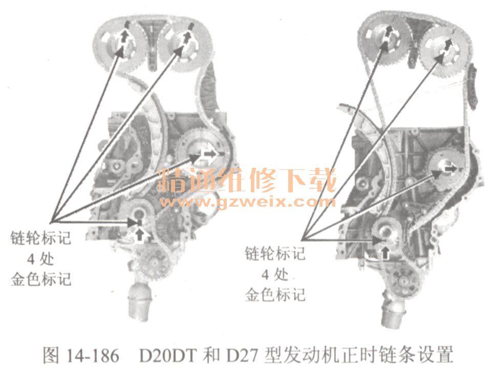 d20dt和d27型发动机正时链条设置如图14-186所示.