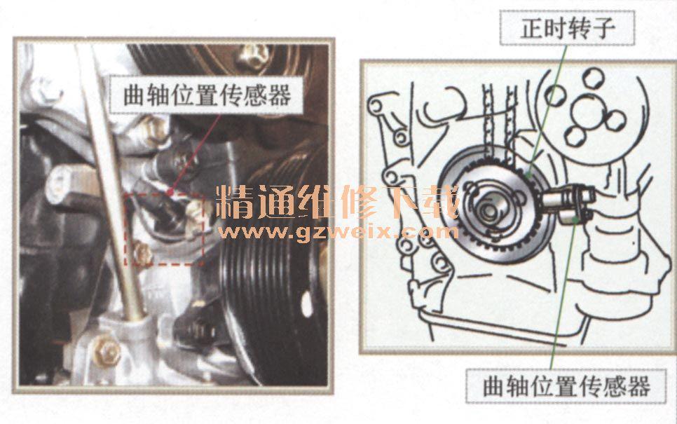 (三)凸轮轴/曲轴位置传感器解析 曲轴位置传感器(CPS)又称为发动机转速与曲轴转角传感器,其作用是采集发动机曲轴转角和转速信号,并输人至控制单元(ECU),以便确定点火时刻和喷油时刻。 凸轮轴位置传感器(CIS)又称为判缸传感器。功用是采集1缸压缩上止点位置信号,以便ECU进行顺序喷油控制、点火时刻控制和爆燃控制。此外,凸轮轴位置信号还用于发动机起动时识别出第一次点火时刻。 曲轴/凸轮轴位置转感器一般可分为磁脉冲式、光电式和霍尔式曲轴位置传感器。 1.凸轮轴/曲轴位置传感器分类及其工作原理 磁脉冲式凸轮