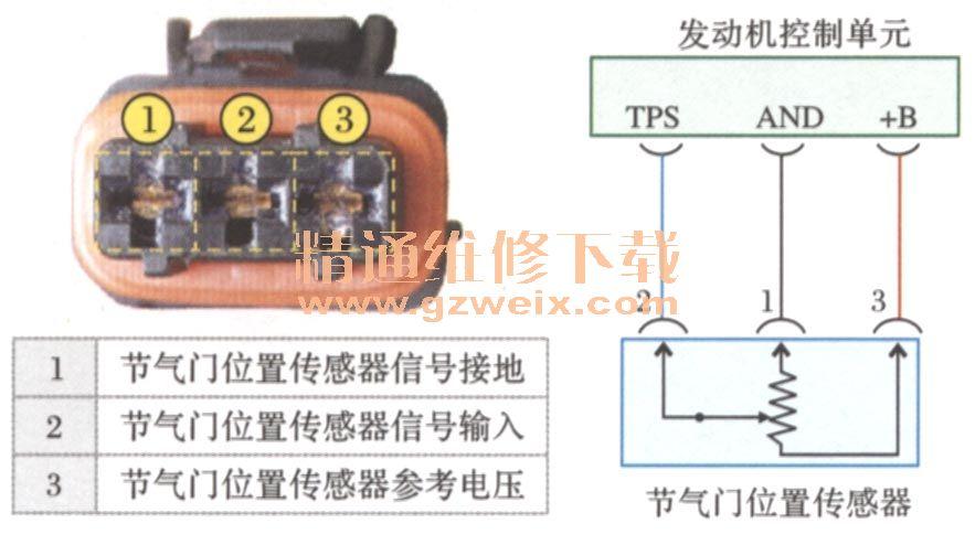 (四)节气门位置传感器解析 1.节气门位置传感器的作用 节气门位置传感器的作用 节气门位置传感器一般安装在节气门体上节气门轴一端,其作用是将节气门开度(即发动机负荷)大小转化为电信号输人给ECU, ECU根据输人的节气门位置信号判断发动机的工况(如怠速、部分负荷、大负荷工况等),并根据发动机的不同工况对喷油量进行控制;在装有自动变速器的车上,节气门位置传感器检测的节气门开度信号还是变速器确定换档时机和变矩器确定锁止时机的主要信号之一。节气门位置传感器一般有触头开关式和可变电阻式两种。  2.