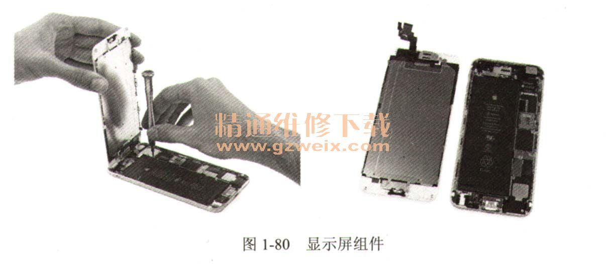 iPhone 6和iPhone 6 Plus的拆卸方法基本相同,这里以iPhone 6 Plus为例讲解拆装机方法。 1. 拆卸手机显示屏组件 iPhone 6 Plus的底部螺丝钉一如既往的与此前iPhone 5S的相同,如图1-79所示。  和之前的iPhone 5、iPhone 5S一样,屏幕的排线由金属支架牢牢固定在逻辑板上。拆下显示屏固定到主板上的三个螺丝钉,分离显示屏组件和主板组件,如图1-80所示。  2.取下手机电池 为了避免拆解过程中元器件短路,要先给主板断电,取下电源连接线的屏蔽罩。电
